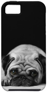 Cute pug iPhone case